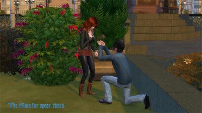 プロポーズ中